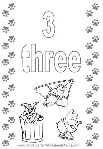 Coloring Number Preschool Worksheet Printable Kindergarten Pdf