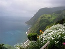 Nordeste in Azores, a photo from Acores, Islands | TrekEarth
