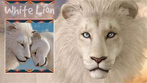 CWRW White Lion for the HiveWire Lion Family - A CWRW ...