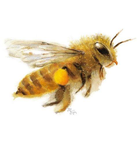 honey bee watercolor giclee print nature illustration honey