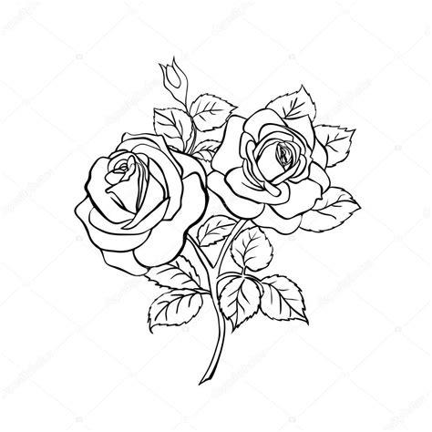 Desenho de rosa em fundo branco Vetor de Stock © Likka