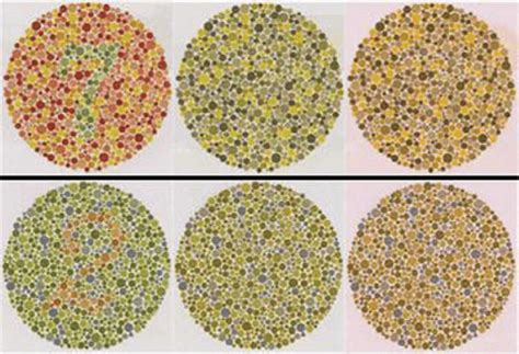 Take The Ishihara Test! Color Sighted Individuals Will