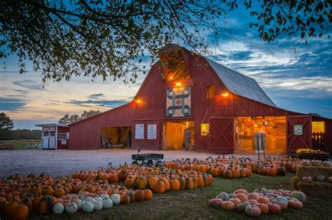 Priddy Farms Pumpkin Patch Memphis Tn by 100 Pumpkin Patch Farms Nashville Tn Oakes Farm