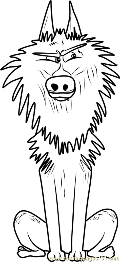 alpha wolf coloring page  storks coloring pages