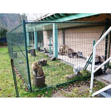 construire un enclos exterieur pour chat construire un enclos exterieur pour chat 28 images chatterie de l eperon elevage de chat
