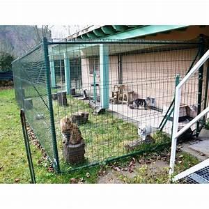 Construire Enclos Pour Chats : hauteur cloture chat ~ Melissatoandfro.com Idées de Décoration