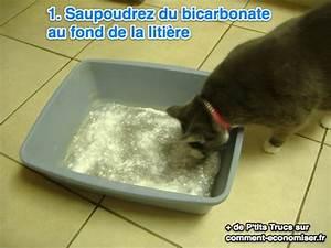 Litiere Chat Sans Odeur : plus de 25 des meilleures id es de la cat gorie liti re ~ Premium-room.com Idées de Décoration