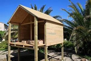 Comment Construire Une Cabane à écureuil : fabrication cabane sur pilotis ~ Melissatoandfro.com Idées de Décoration