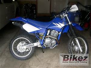 Yamaha 250 Ttr : 2005 yamaha tt r 250 specifications and pictures ~ Medecine-chirurgie-esthetiques.com Avis de Voitures