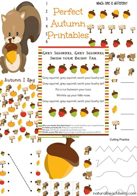 the best squirrel activities for preschool amp kindergarten 940 | fall squirrel printables