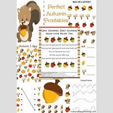 The Best Squirrel Activities For Preschool & Kindergarten