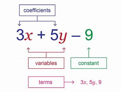 Algebraic Expressions Parts Example Identifying Brackets Expression