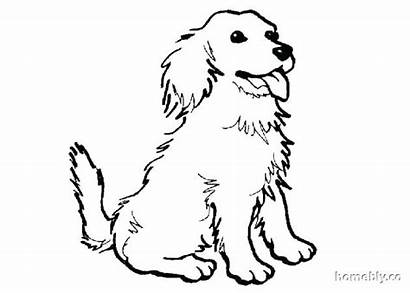 Coloring Dog Pages Spaniel Puppy Cartoon Dogs