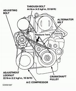 2000 Honda Accord V6 Engine Diagram 1998 Honda Accord Serpentine Belt Routing And Timing Belt