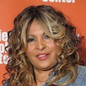 Pam Grier Net Worth - biography, quotes, wiki, assets ...