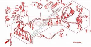 Wire Harness For Honda Fourtrax Rancher 350 Electric Shift 2001   Honda Motorcycles  U0026 Atvs