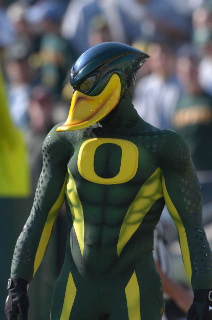 duck mascots ferrebeekeeper