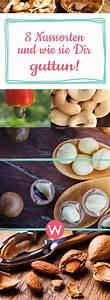 Nüsse Welche Nüsse : diese n hrstoffe stecken in n ssen gesund essen gesundheit nuss und ern hrung ~ Cokemachineaccidents.com Haus und Dekorationen