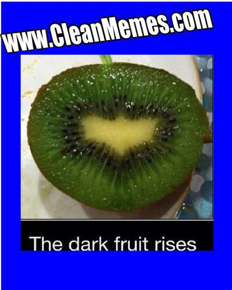Fruit Memes - bat fruit memes