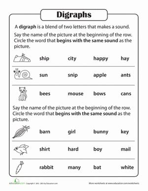 phonics practice test blends and digraphs worksheet education