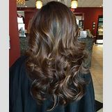 Dark Brown Hair With Caramel Highlights | 500 x 598 jpeg 45kB