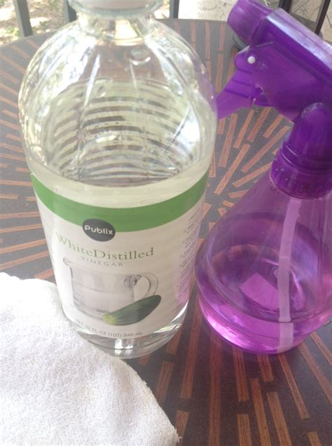 vinegar and water how to clean stubborn carpet stains with an iron and vinegar homemaker chic