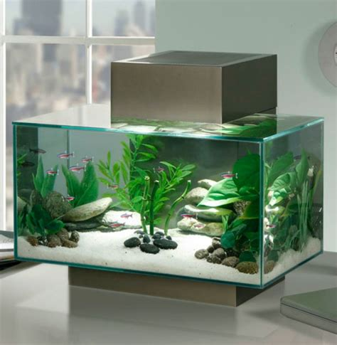 cuisine ilot central table aquarium design idées originales de meubles aquarium