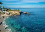 La Jolla Cove: Things to Do, Beach, Directions, Parking ...