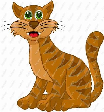 Cat Clipart Cartoon Cats Jokes Smile Think