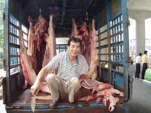 Paulmidler Com  U00bb Tainted Pork  Nine Arrested In Guangzhou