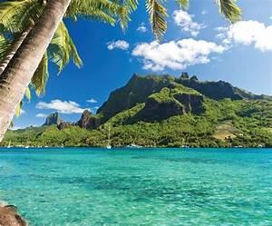Tahiti & The Tuamotu Islands Cruises | Windstar Cruises
