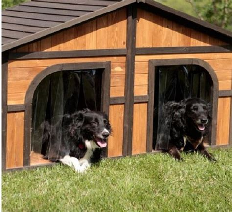 double dog house extra large wood duplex outdoor pet shelter cage kennel xl ebay