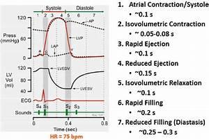 3  Cardiac Cycle And Valve Function At Utah Valley