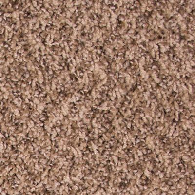 Untouchable Low Pile Plush Carpet Price   The Carpet Guys