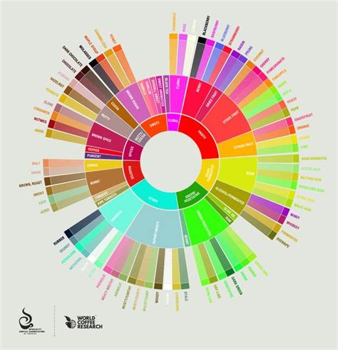 Introducing the new SCAA Flavour Wheel ? Cafédirect Handpicked   Premium Coffee Subscription