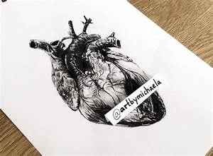 Drawing a Human Heart - YouTube