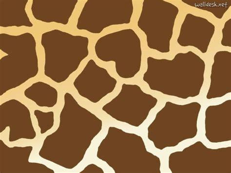 Images Of Giraffe Print Wallpaper Border