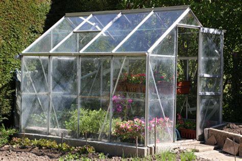 was kann in ein gewächshaus pflanzen so bauen sie selbst ein gew 228 chshaus und kultivieren pflanzen