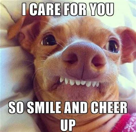Cheer Up Meme - cheer up meme funny pictures to cheer you up