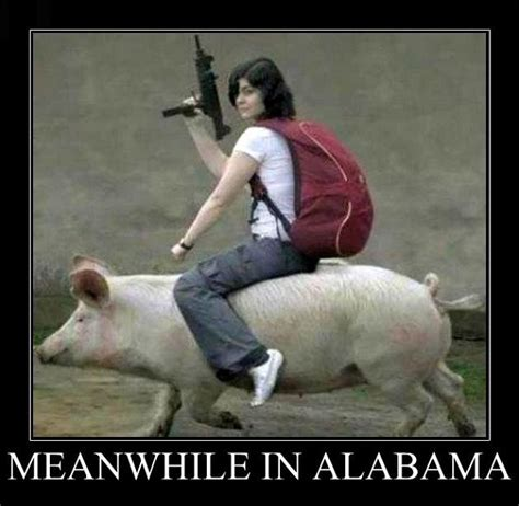 Funny Alabama Memes - best meanwhile in memes