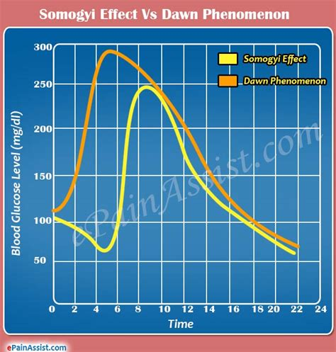 somogyi effect  dawn phenomenon differences worth knowing