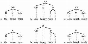 Branching  Linguistics