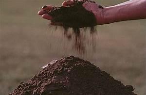 Ph Du Sol : jardinage comment mesurer le ph du sol de fa on ~ Melissatoandfro.com Idées de Décoration