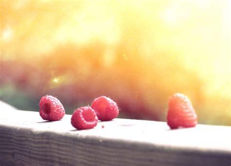 food healthy summer sun hd wallpaper high resolution