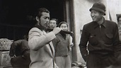 Toshiro Mifune Documentary Q&A: On the First Non-White ...