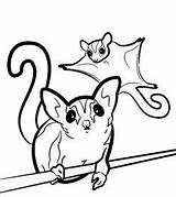 Coloring Pages Sugar Animals Glider sketch template