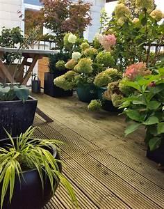 Pflanzen Für Dachterrasse : dachterrasse balkon nelka dachterrasse balkon ~ Michelbontemps.com Haus und Dekorationen