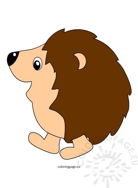 Hedgehog Clipart Free Hedgehog Clipart Pictures Coloring Page