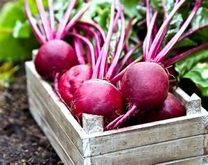 Benefits of Beets: 10 Amazing Reasons to Eat More Beets