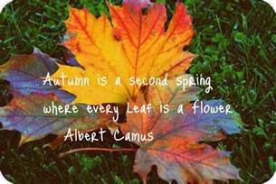 Image result for fall pictures quotes
